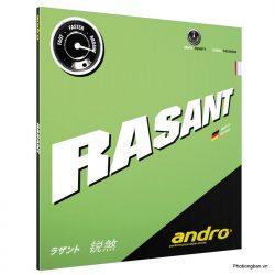 rasant 1