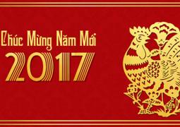 hinh-anh-dep-tet-2017-xuan-2017-dinh-dau-2