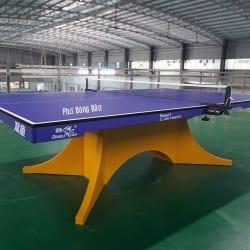 Bàn bóng bàn Song Ngư Volant Wing (2)